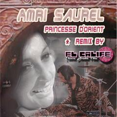 Remix Princesse D'orient Par El Calife