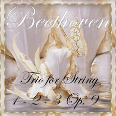 Beethoven: Trio for String Nos. 1, 2 & 3, Op. 9
