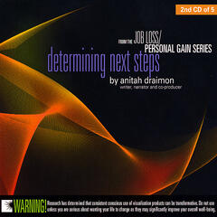 Job Loss Personal Gain- Determining Next Steps (Disc 2)
