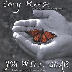You Will Soar