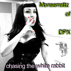 Chasing the White Rabbit!