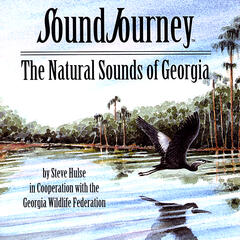Sound Journey: The Natural Sounds of Georgia
