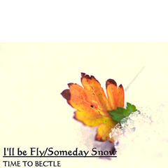 I'll be Fly / Someday Snow