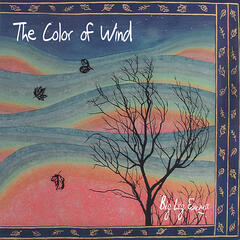 Color of Wind