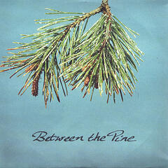 Between The Pine