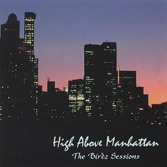 High Above Manhattan