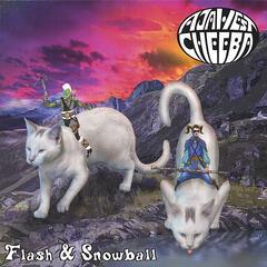 Flash & Snowball