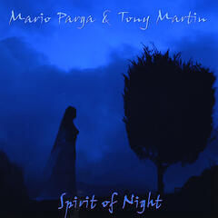 Spirit of Night