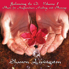 Balancing the Qi Vol. 1 Music for Acupuncture, Healing and Massage. Double disc album.