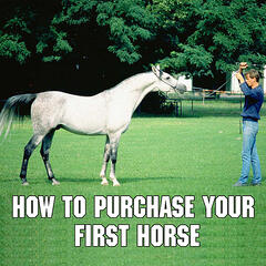 Purchasing Your First Horse