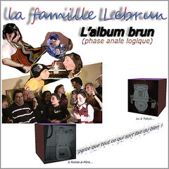 L'album brun (phase anale logique)
