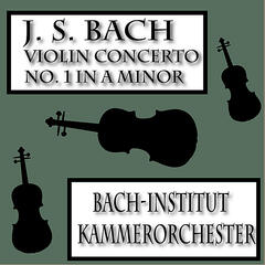 Bach Violin Concerto in A minor, Pachelbel's Canon and More