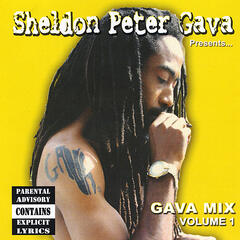Sheldon Peter Gava Presents: Gava Mix, Vol. 1
