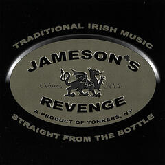 Traditional Irish Music-Straight From The Bottle