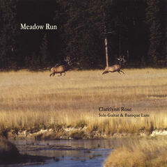 Meadow Run