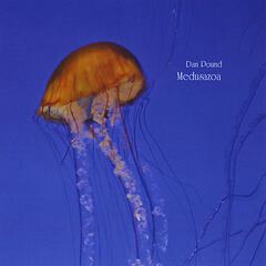 Medusazoa