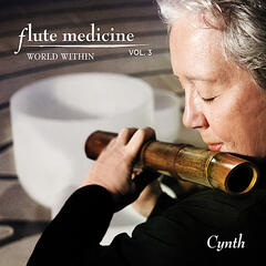 Flute Medicine, Vol. 3 World Within