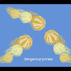 Dangerous Ponies