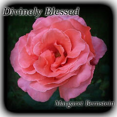Divinely Blessed
