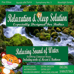 Relaxing Sound of Water (Brook) with Soothing Classical Music for My Smart Baby (24 Classical Masterpieces In 1 Track)
