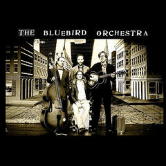 The Bluebird Orchestra