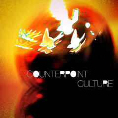 Counterpoint Culture