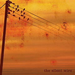 The Silent Wire