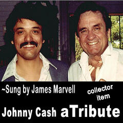 Johnny Cash a Tribute