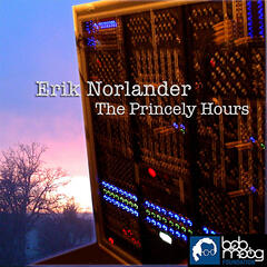 The Bob Moog Foundation Collection: The Princely Hours