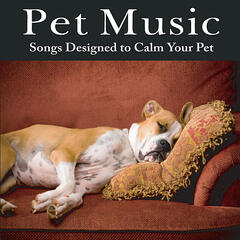 Pet Music: Songs Designed to Calm Your Pet Music for Pets, Music for Dogs, Music for Cats