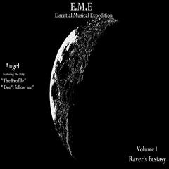 E.M.E (Essential Musical Expedition), Vol. 1 Raver's Ecstasy
