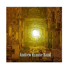 Andrew Krause Band