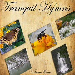 Tranquil Hymns, Vol. One