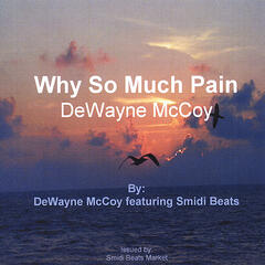 Why So Much Pain (feat. Smidi Beats)