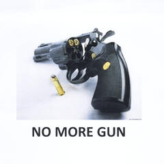 No More Gun