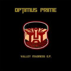 Valley Madness E.P.