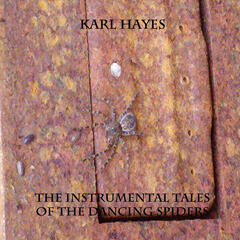 The Instrumental Tales Of The Dancing Spiders
