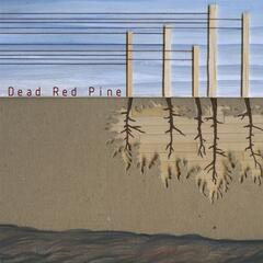 Dead Red Pine