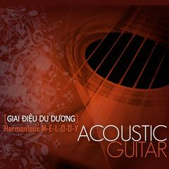 Harmonious Melody (Acoustic Guitar)
