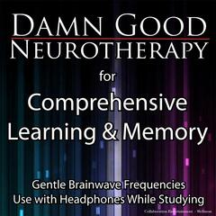 Damn Good Neurotherapy: Comprehensive Learning and Memory