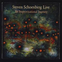 Steven Schoenberg Live: An Improvisational Journey