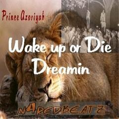 Wake Up or Die Dreamin