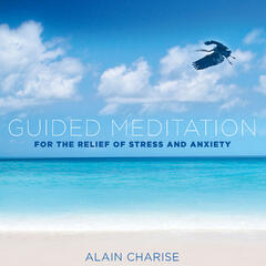 Guided Meditation for the Relief of Stress and Anxiety (feat. Matthew Vitti)