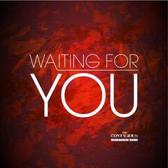 Waiting for You (feat. Courtney Teixeira)