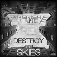 Destroy the Skies