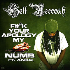 F#@k Your Apology My Heart Numb(feat. Aniko)