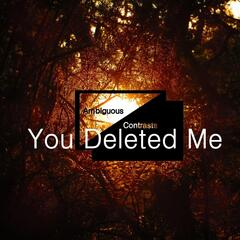 You Deleted Me