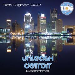 Unleash Detroit