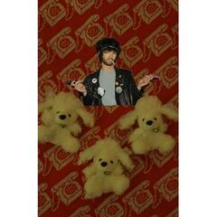 Pookie and the Poodlez