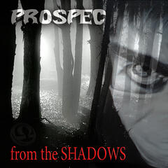 From The Shadows / Damager